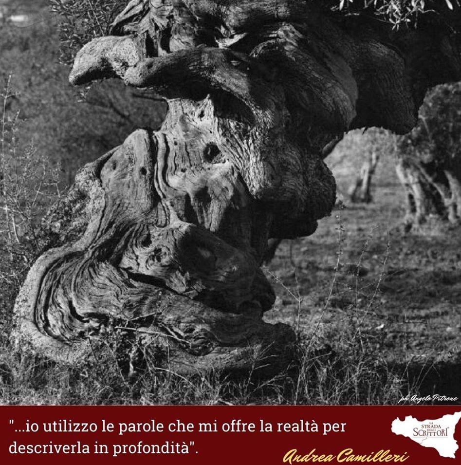 I luoghi del Romanzo (50)